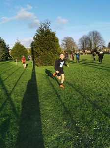 Year 7 and 8 Area Cross Country Success